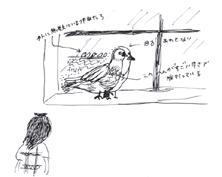 hato-03.jpg